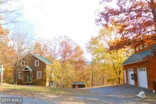 1944 Crossings View Road, Bloomery, WV 26817 (#HS9804339) :: Pearson Smith Realty