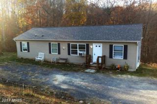 956 Sugar Run Road, Romney, WV 26757 (#HS9813102) :: Pearson Smith Realty