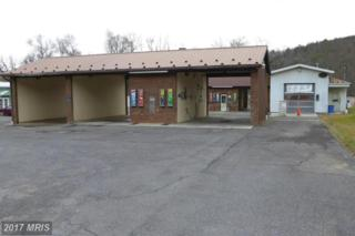 25038 Northwestern Pike, Romney, WV 26757 (#HS9824841) :: Pearson Smith Realty