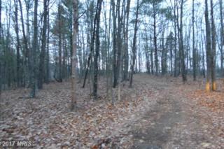 4 Overlook Drive, Delray, WV 26714 (#HS9838299) :: LoCoMusings