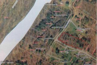Autumn Drive, Capon Bridge, WV 26711 (#HS9885329) :: Pearson Smith Realty