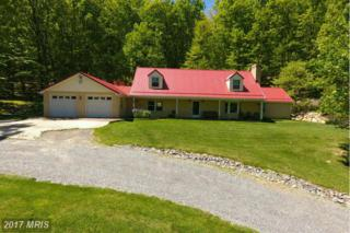 643 Old Fire Tower Road, Capon Bridge, WV 26711 (#HS9926528) :: Pearson Smith Realty