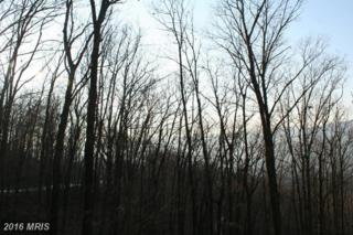 Lot #115 Deep Forest Drive, James Creek, PA 16657 (#HU9654302) :: Pearson Smith Realty