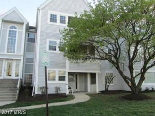 8387 Montgomery Run Road F, Ellicott City, MD 21043 (#HW9819975) :: Pearson Smith Realty