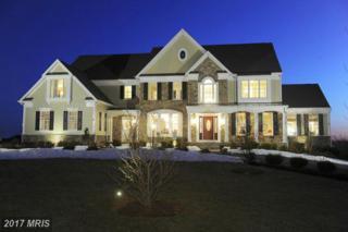 12167 Fulton Estates Court, Fulton, MD 20759 (#HW9829463) :: Pearson Smith Realty
