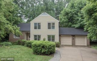 4038 White Star Way, Ellicott City, MD 21042 (#HW9845802) :: LoCoMusings