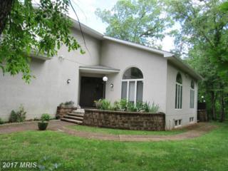 3538 Garrett Court, Ellicott City, MD 21042 (#HW9885036) :: Pearson Smith Realty