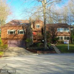 11314 Buckleberry Path, Columbia, MD 21044 (#HW9891187) :: Pearson Smith Realty