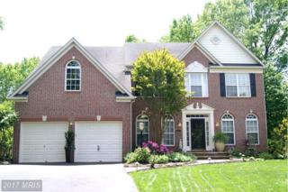 10537 Chester Way, Woodstock, MD 21163 (#HW9945467) :: Pearson Smith Realty