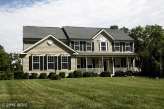 201 Ryans Glen Drive, Charles Town, WV 25414 (#JF9757443) :: Pearson Smith Realty