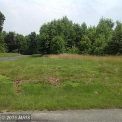 Cogar Road, Chestertown, MD 21620 (#KE8760279) :: Pearson Smith Realty