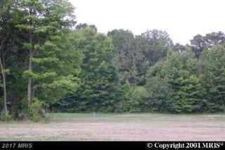 Swan Creek Road, Rock Hall, MD 21661 (#KE9608227) :: LoCoMusings