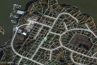 Foreston Road SE, Chestertown, MD 21620 (#KE9622172) :: Pearson Smith Realty