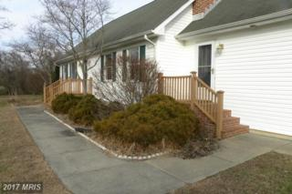 13879 Gregg Neck Road, Galena, MD 21635 (#KE9844631) :: Pearson Smith Realty