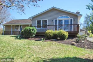 31587 Maryland Avenue, Galena, MD 21635 (#KE9905265) :: Pearson Smith Realty