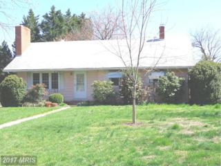 116 Malone Avenue, Chestertown, MD 21620 (#KE9915395) :: Pearson Smith Realty