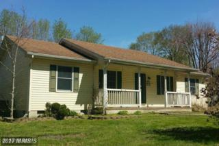 23308 Sandpiper Road, Chestertown, MD 21620 (#KE9941005) :: Pearson Smith Realty