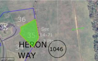 Heron Way Lot 35, King George, VA 22485 (#KG9600580) :: LoCoMusings