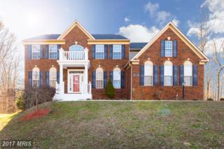 7890 Cypress Drive, King George, VA 22485 (#KG9856664) :: Pearson Smith Realty