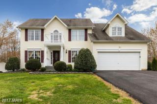 12920 Meadow Way, King George, VA 22485 (#KG9903196) :: Pearson Smith Realty
