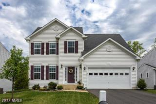 5471 Weems Drive, King George, VA 22485 (#KG9915972) :: Pearson Smith Realty