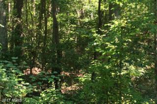 LOT 27 Salvia Road, Newtown, VA 23126 (#KQ9742248) :: Pearson Smith Realty