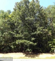 117 Spruce Drive, Mineral, VA 23117 (#LA8751465) :: Pearson Smith Realty