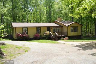 160 Lakewood Drive, Mineral, VA 23117 (#LA9849480) :: Pearson Smith Realty