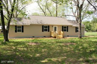 16 Wagner Farm Road, Louisa, VA 23093 (#LA9901212) :: Pearson Smith Realty