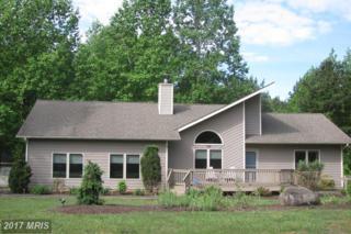 122 Lake Forest Court, Mineral, VA 23117 (#LA9932494) :: Pearson Smith Realty