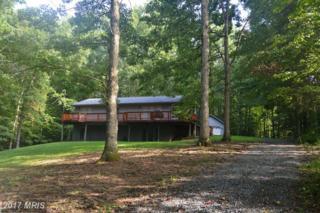 120 Eagles Cove Road, Mineral, VA 23117 (#LA9952803) :: Pearson Smith Realty