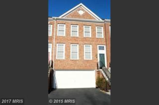 18449 Montview Square, Leesburg, VA 20176 (#LO9745290) :: Pearson Smith Realty