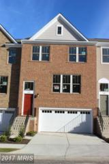 223 Natural Terrace, Leesburg, VA 20175 (#LO9756807) :: Pearson Smith Realty