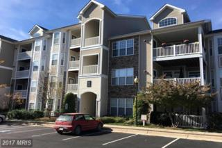 514 Sunset View Terrace SE #407, Leesburg, VA 20175 (#LO9806553) :: Pearson Smith Realty