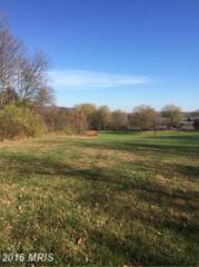 Folly Lane, Lovettsville, VA 20180 (#LO9812769) :: Pearson Smith Realty