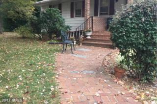 24158 Bowmantown Road, Aldie, VA 20105 (#LO9813557) :: LoCoMusings