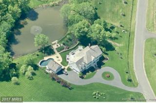 24128 Grand Ellison Court, Aldie, VA 20105 (#LO9822502) :: Pearson Smith Realty