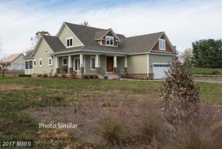 23460 Mersey Road, Middleburg, VA 20117 (#LO9828600) :: Pearson Smith Realty