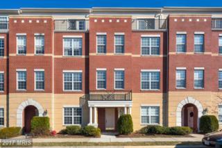 22648 Verde Gate Terrace, Ashburn, VA 20148 (#LO9829190) :: Pearson Smith Realty