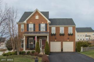 21042 Hooded Crow Drive, Leesburg, VA 20175 (#LO9829623) :: Pearson Smith Realty
