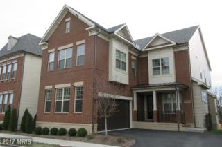44725 Malden Place, Ashburn, VA 20147 (#LO9836094) :: Pearson Smith Realty
