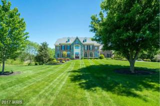 22090 Auction Barn Drive, Ashburn, VA 20148 (#LO9854854) :: Pearson Smith Realty