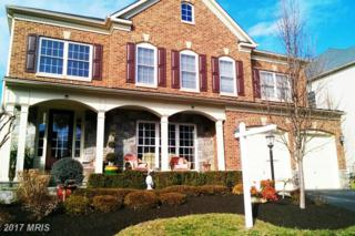 42036 Foley Headwaters Street, Aldie, VA 20105 (#LO9856570) :: Pearson Smith Realty