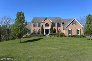 38470 Wooded Hollow Drive, Hamilton, VA 20158 (#LO9858607) :: Pearson Smith Realty