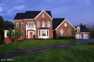 16146 Waterford Creek Circle, Hamilton, VA 20158 (#LO9862015) :: Pearson Smith Realty