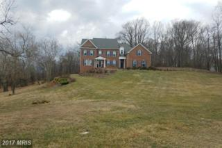 18140 Turnberry Drive, Round Hill, VA 20141 (#LO9871521) :: LoCoMusings