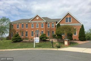 43007 Janneys Corner Court, Ashburn, VA 20148 (#LO9871892) :: Pearson Smith Realty
