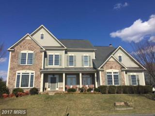 19442 Valleybrook Lane, Leesburg, VA 20175 (#LO9873063) :: Pearson Smith Realty