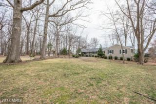 17520 Tranquility Road, Purcellville, VA 20132 (#LO9874098) :: LoCoMusings