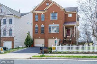 43771 Carrleigh Court, Ashburn, VA 20147 (#LO9875902) :: Robyn Burdett Real Estate Group